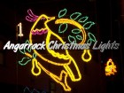 Angarrack Christmas Lights - 01 - Partridge in a Pear Tree