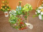 Flower Arrangements June 2014 part 2